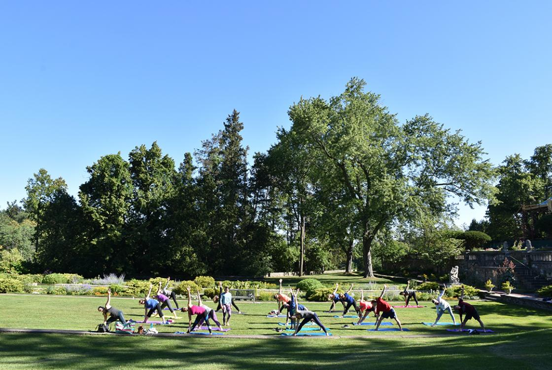 Photograph of a Yoga in the Gardens class at Cranbrook House & Gardens, summer 2017.