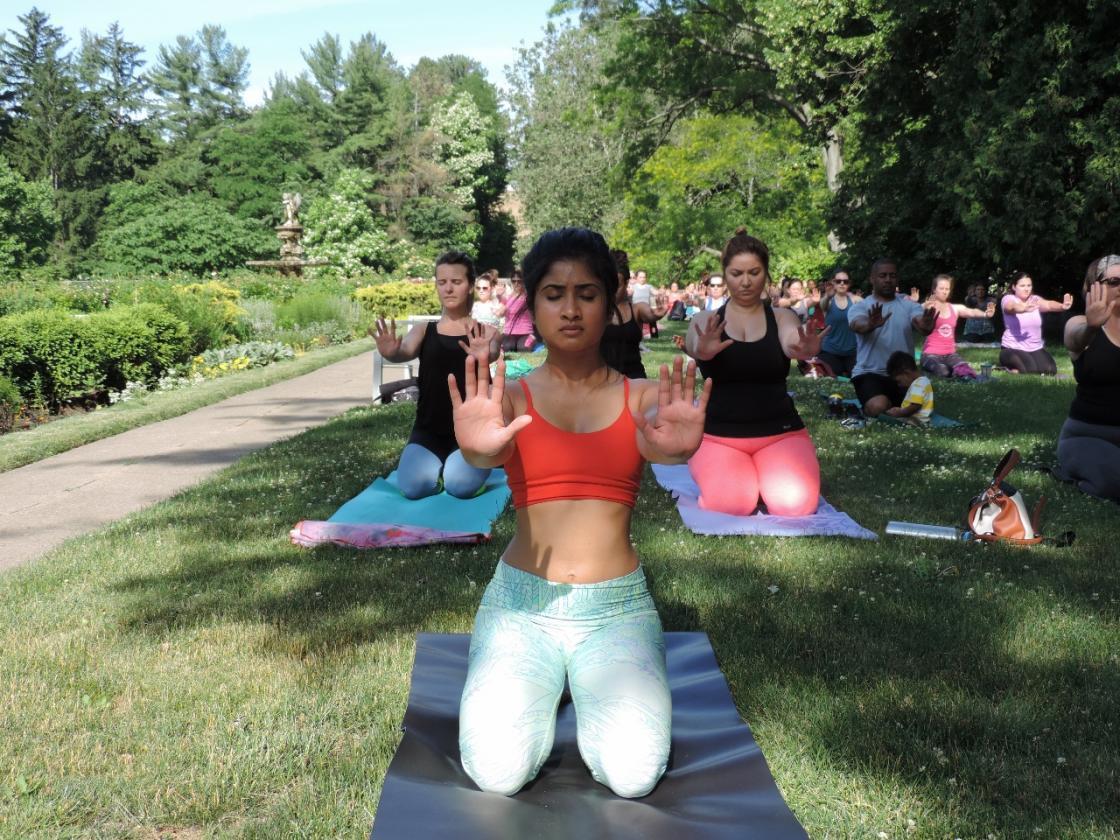Yogi at the Yoga Movement at Cranbrook Gardens 2016