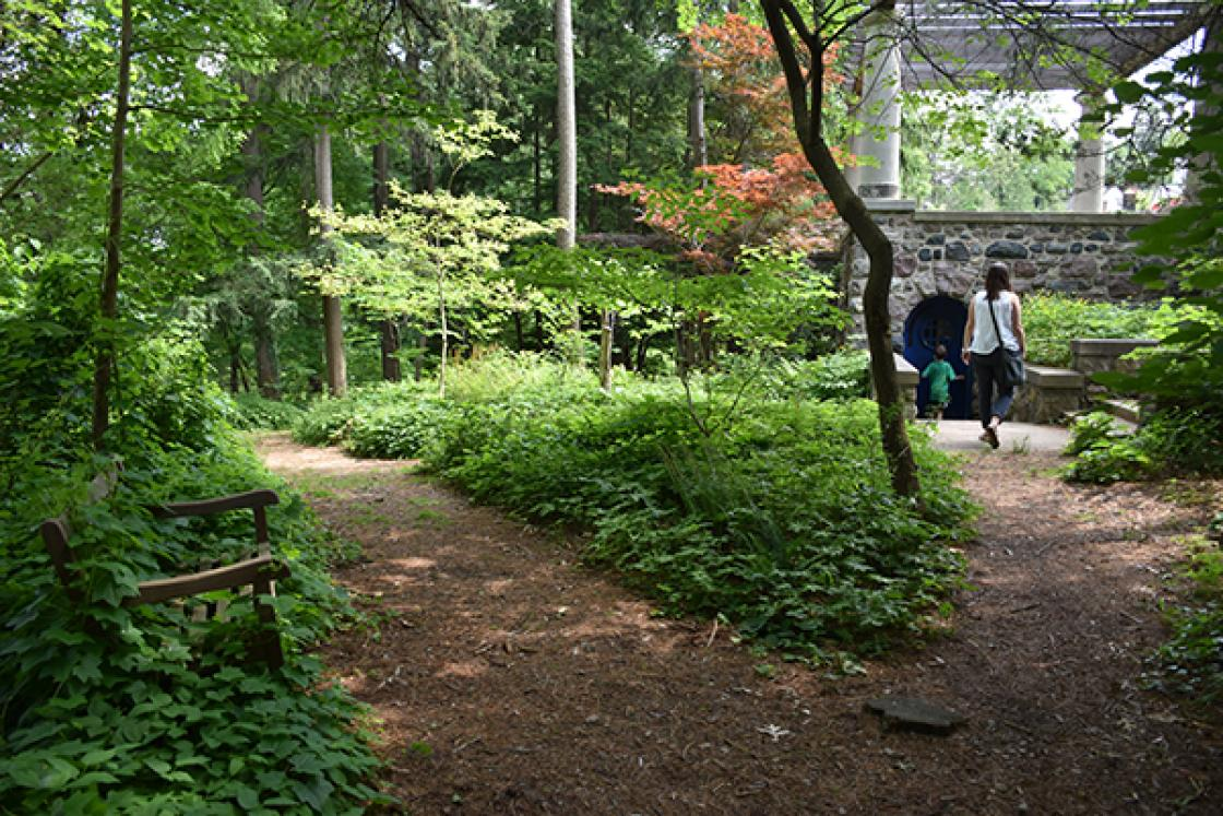 Photograph of visitors in the Native Plant Garden at Cranbrook House & Gardens.