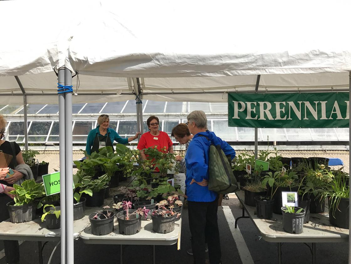 Volunteers at the Cranbrook House & Gardens Spring Plant Sale 2017.